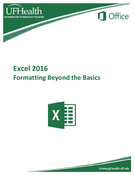 Excel 2016 Formatting Beyond the Basics